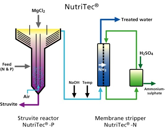 Esquema NutriTec